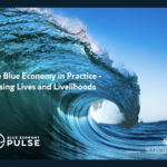New report shows how Blue Economy practices can RAISE aspirations around the globe