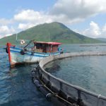 Net Spend: Vietnam invests in the future of aquaculture