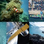 Reasons to be cheerful: Can technology save the Blue Economy?